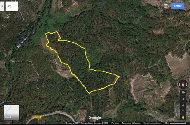 Terreno em Silgueiros (VISEU) com 45mil m2