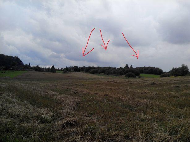 1,1 ha na wzgórzu po siedlisku spokój cisza prąd siła, na kolonii