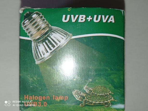 Для маленьких и больших черепах : лампочка ультрафиолет с обогревом.