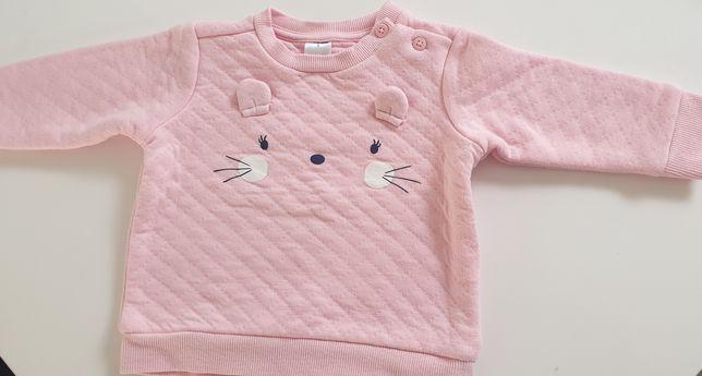 Bluza kotek r.68 Baby club