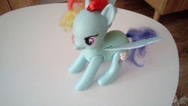 Rainbowdash konik dla dziewczynki