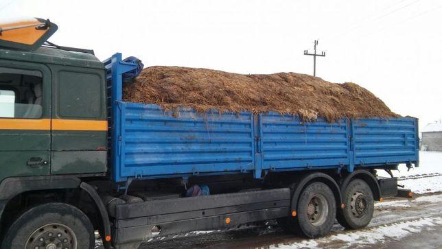 OBORNIK Bydlęcy transport 30 ton