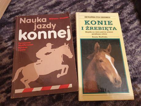 Nauka jazdy konnej oraz Konie i źrebięta