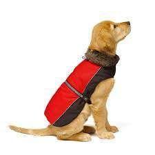 жилетка для собаки Doggone Smart