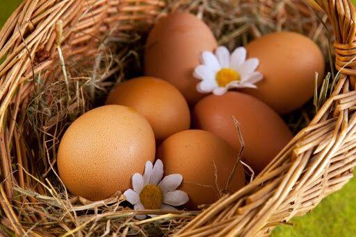 Московская Ч. Яйца Инкубационные