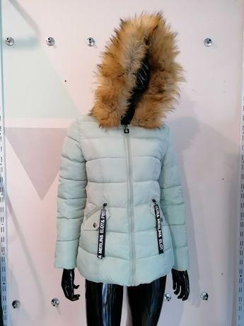 Куртки Куртка Зимняя одежда
