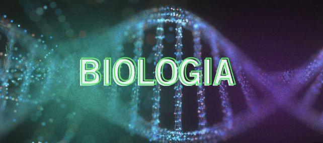Korepetycje z biologii ze studentką medycyny
