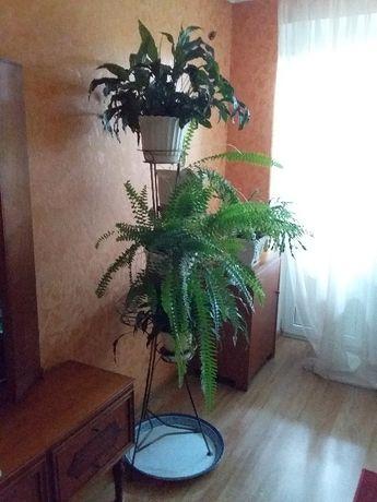 Стойка для цветов металлическая напольная на 5 вазонов