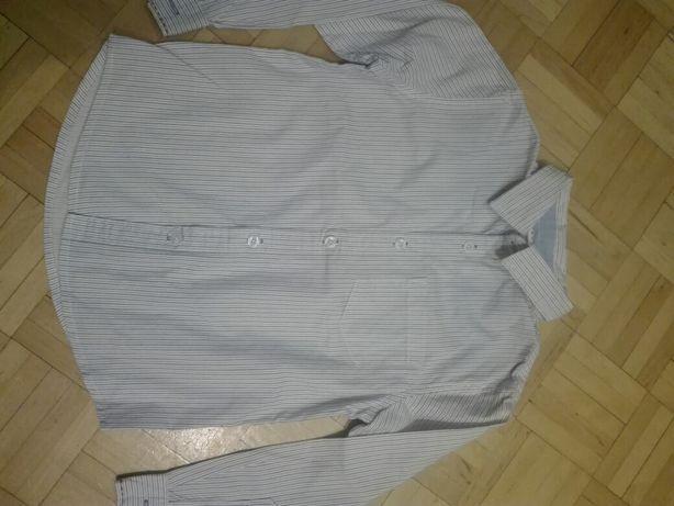 Koszula 116