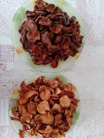 Продам качественные сухофрукты (яблоки, абрикосы) из домашнего сад