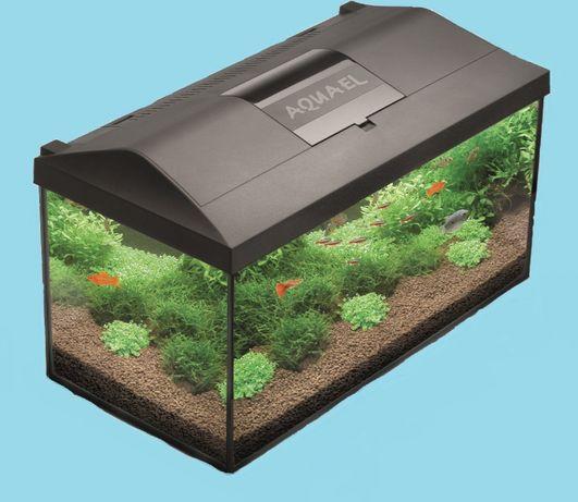 Akwarium 105 litrów Aquael Pap Set Leddy 75 oświetlenie filtr grzałka