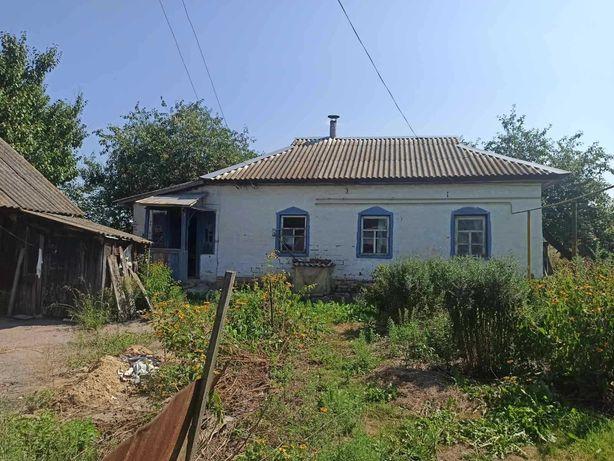 Продам дом  с участком 26 соток Новый Белоус