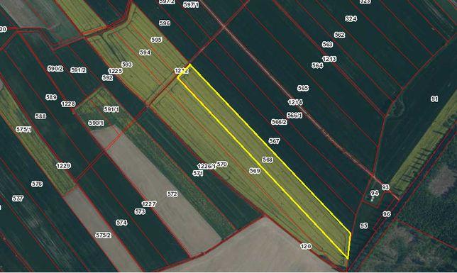 Sprzedam działkę rolną o powierzchni 2,9 ha
