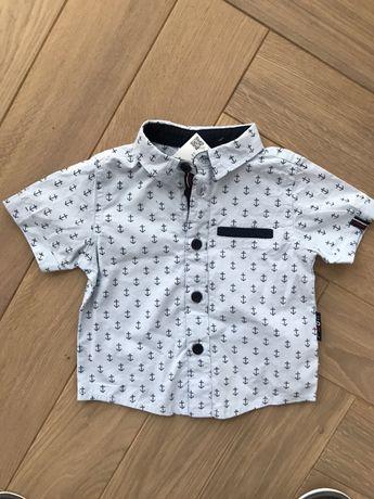 Koszulka Coccodrillo z metkami rozm 62/68