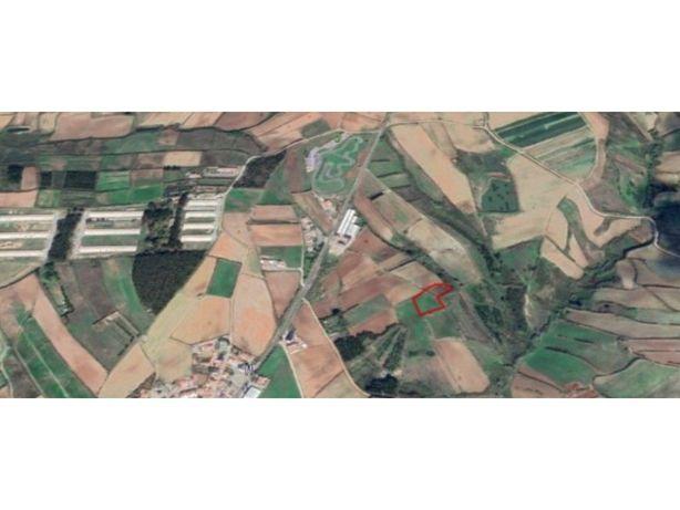 Terreno agrícola, com 4440 m2, perto da Lourinhã