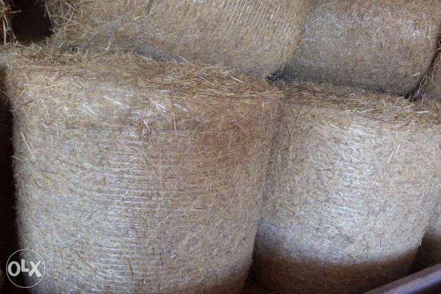 Słoma 50szt. bele SIATKA 135x120 pż/pszenica zamiana na obornik