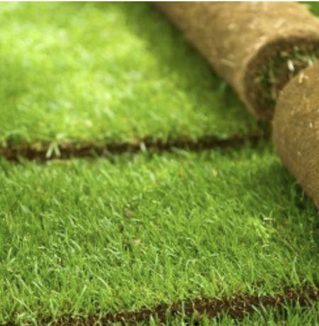 Trawa z rolki, trawnik rolowany PREMIUM - dostepny