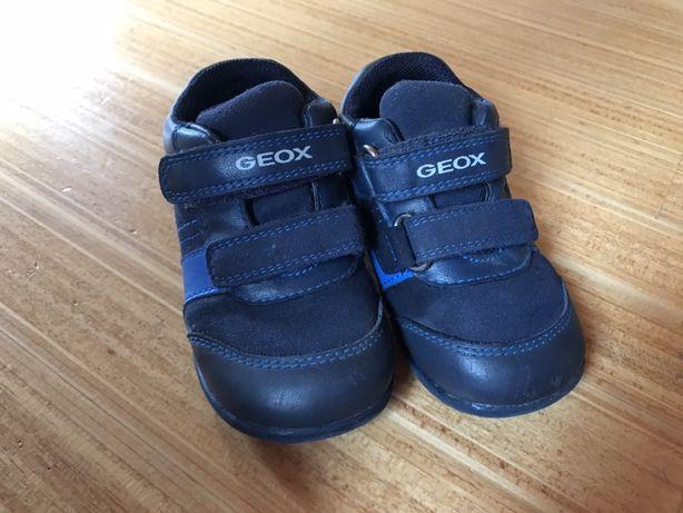 Взуття, красовки Geox