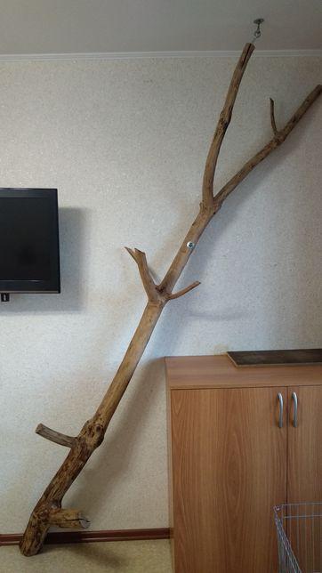 Элемент декора. Натуральное дерево.