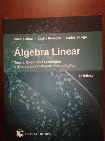 Álgebra Linear: Teoria e Exercícios Resolvidos