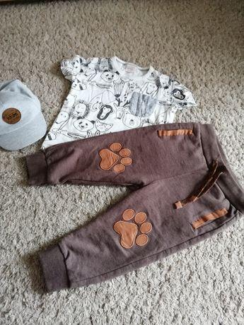 Spodnie coccodrillo bluzka Zara 92 komplet zwierzęta
