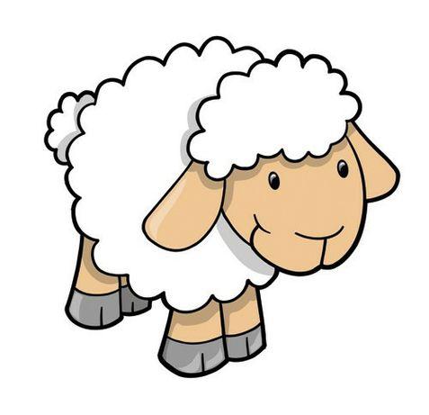 Owca na mięso...