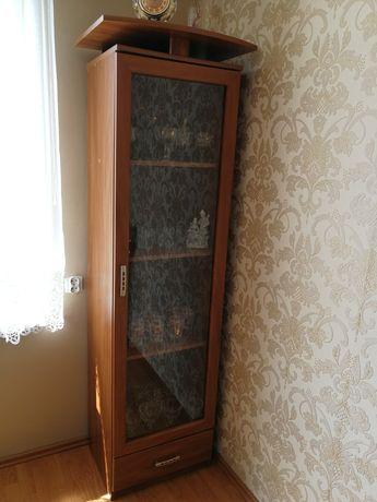 Witryna stojąca z szufladą