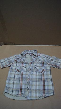 Koszula dla dzieci firmy Request