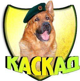 Дрессировка собак, всех пород.http://kss-kaskad.org.ua/