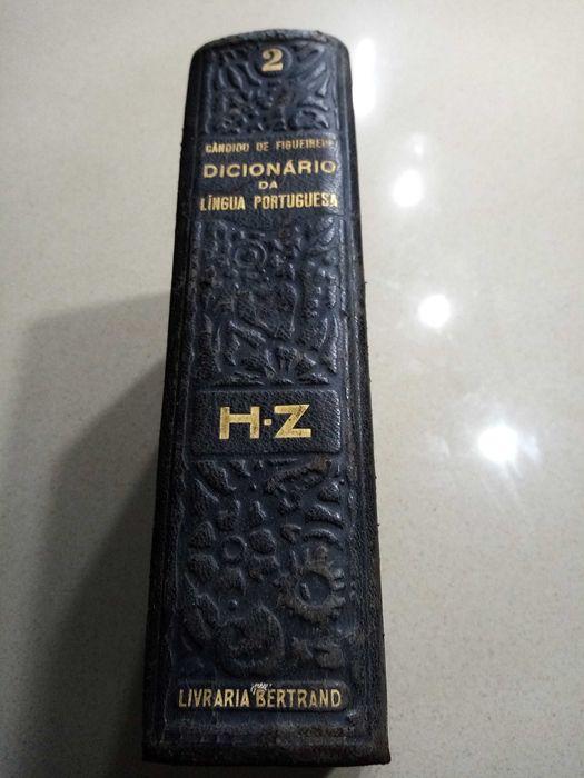 Antigo Dicionário livro Bravães - imagem 1