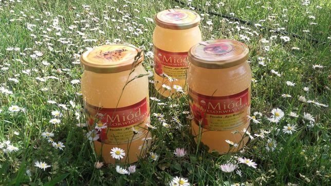 Naturalny miód pszczeli z własnej pasieki_Organic-Amitraz free
