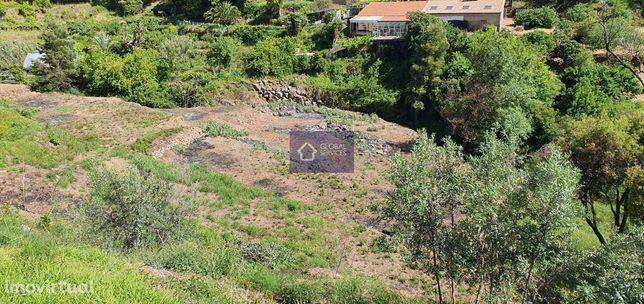 Vende- se terreno rústico com 4800m2 - Baticova - Monchique