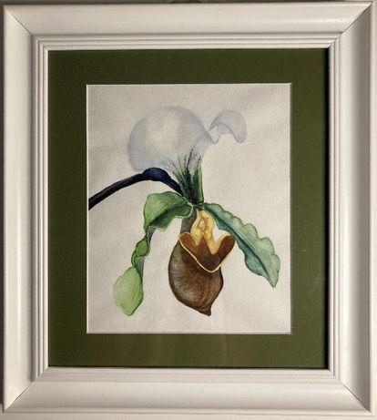 """Картина акварель """"Орхідея"""""""
