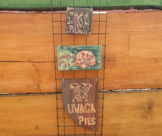 Tabliczka ostrzegawcza UWAGA PIES tabliczka ozdobna pies