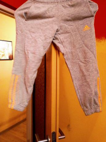 Spodnie dresowe Adidas r110