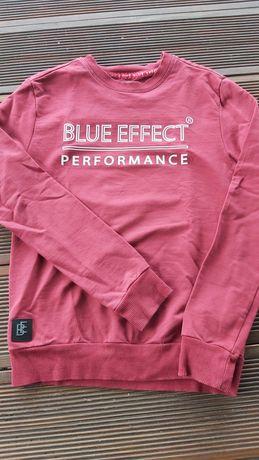Bluza  Blue Efefect 9/10 lat;140 cm