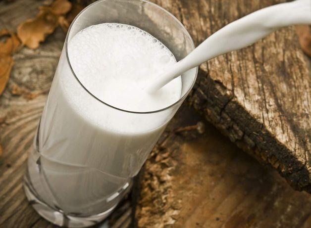 Коровье и козье домашнее молоко, творог, масло.