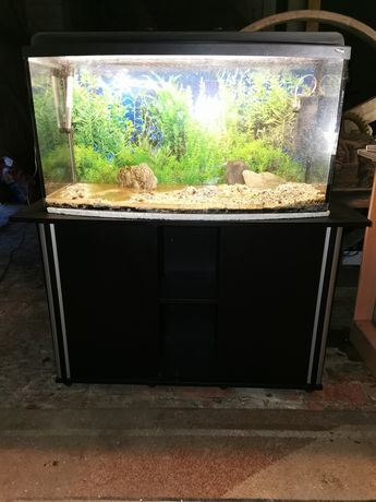 Sprzedam akwarium 200 l