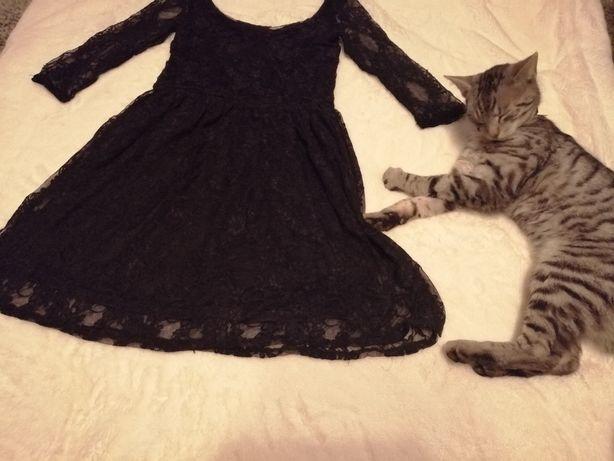 Koronkowa czarna sukienka 36/M
