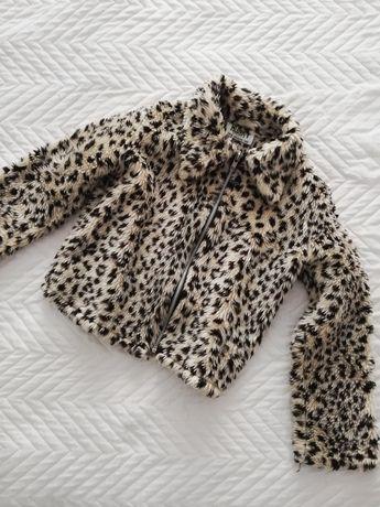 Bluza panterka