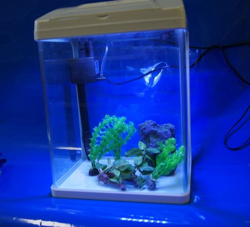Akwarium 25 L fajny zestaw