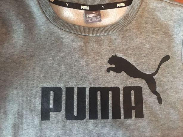 Свитшот/толстовка/реглан Puma