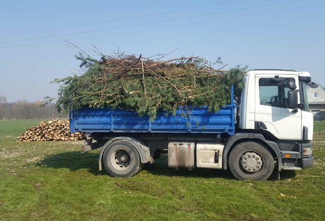 wycinka drzew porządkowanie działki wywóz odpadów rębakowanie