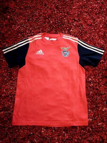 Camisola/ T-Shirt Criança Sport Lisboa e Benfica (SLB)