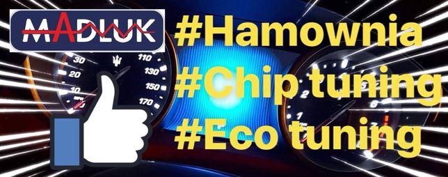 Hamownia ChipTuning EcoTuning diagnostyka DPF DTC EGR