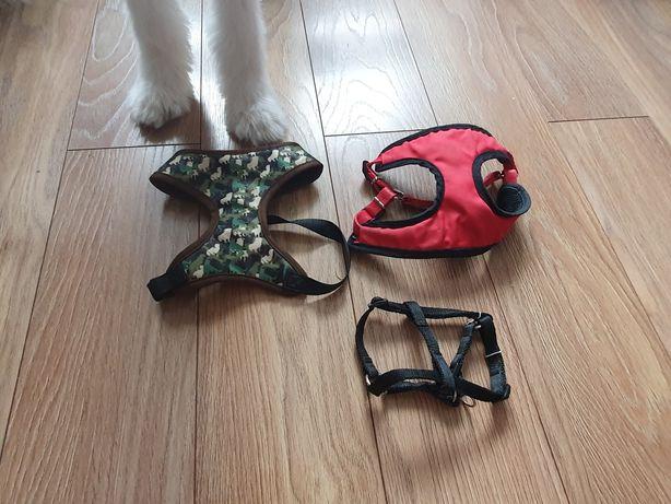 Szelki dla psa małe i średnie
