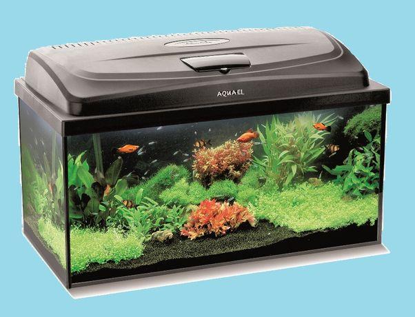 Akwarium z pokrywą LED 140 l 80x35x50 + Gratis