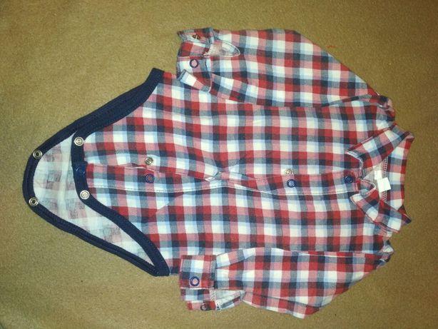 Koszulobody z długim rękawem