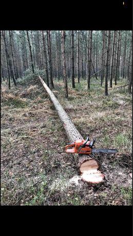 Wycinka drzew, rąbanie drewna, usługi kosą spalinową