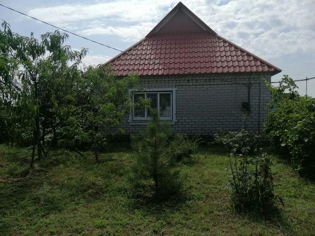 Срочно Продаю дом в селе Новая Заря, рядом г. Кривой Рог